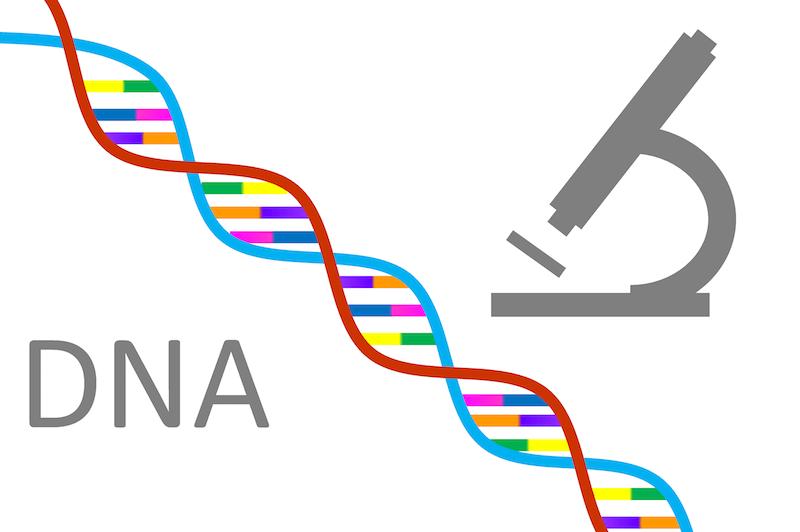 ADN fetal en sangre matena Diagnóstico Prenatal